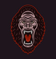 gorilla head with open mouth colorful vector image