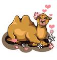 Kiss a Camel vector image vector image
