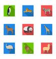 ostrich emu crocodile giraffe tiger penguin vector image vector image