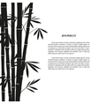 Black bamboo silhouette on a white background vector image vector image