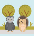 cute owl and hedgehog wild animals forest vector image vector image