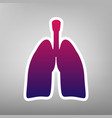 human anatomy lungs sign purple gradient vector image vector image