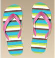 pair flip-flops vector image