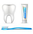 Tooth Brush And Paste vector image