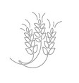 wheat ear thin flat design vector image