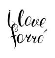 i love forro vector image