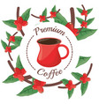 premium coffee tree beans decoration label vector image