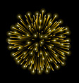beautiful gold firework golden salute isolated on vector image vector image