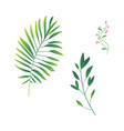 cartoon abstract green plant set icon vector image vector image