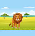 cartoon lion character vector image vector image