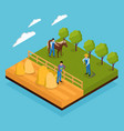 mixed farm isometric composition vector image vector image