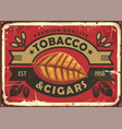 cigars and tobacco vintage tin sign vector image