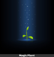 Growing Sprout copy vector image vector image