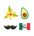 mexican independence day flag avocado flower vector image vector image