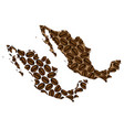 mexico - map of coffee bean vector image