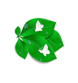 Paper butterflies and green leaves vector image vector image