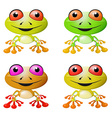 Red-eyed Tree Frog vector image vector image