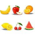 a fruit set vector image