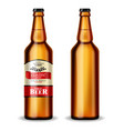 beer bottle realistic mock up product vector image vector image