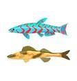cirrhitops fasciatus fish set vector image vector image