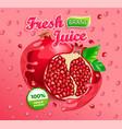 fresh pomegranate juice label vector image