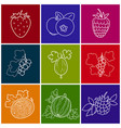 linear berry icons vector image vector image