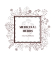 Medicine plant decorative background vector image vector image