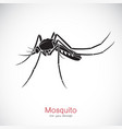 mosquito design on white background insect vector image vector image
