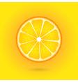 Orange icon on a orange background vector image vector image