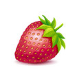 strawberry logo vector image vector image