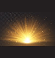 sunlight special lens flash light effect on vector image vector image