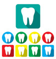 teeth in a flat on the colored backgrounds eps 10 vector image vector image
