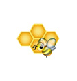 Apiculture Logo vector image vector image