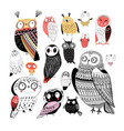 cheerful collection graphic owls on a white vector image vector image