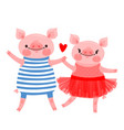 couple of sweet piglets character design pig vector image