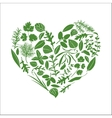 Floral heart made of herbs vector image vector image