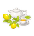 lemon tea vector image vector image