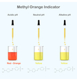 Methyl Orange colors in media with different pH vector image vector image