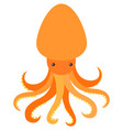 orange octopus on white background vector image