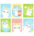 set easter banner with cute rabbits and chicken vector image