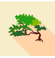 small tree icon flat style vector image vector image