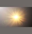sunlight special lens flash light effect on dark vector image vector image