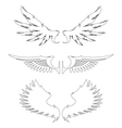 Wing vector image