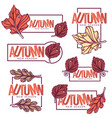 autumn frames stickers emblems fall leaves vector image vector image
