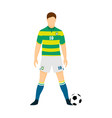 brazil football jersey national team world cup vector image