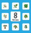flat icon nature set of hickory decoration tree vector image vector image