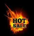 hot sale text on fire vector image