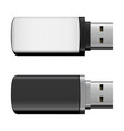 isolated usb pen drives black and white vector image