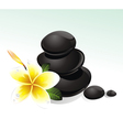 Spa with white flowers vector image
