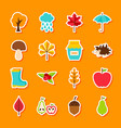 autumn flat stickers vector image